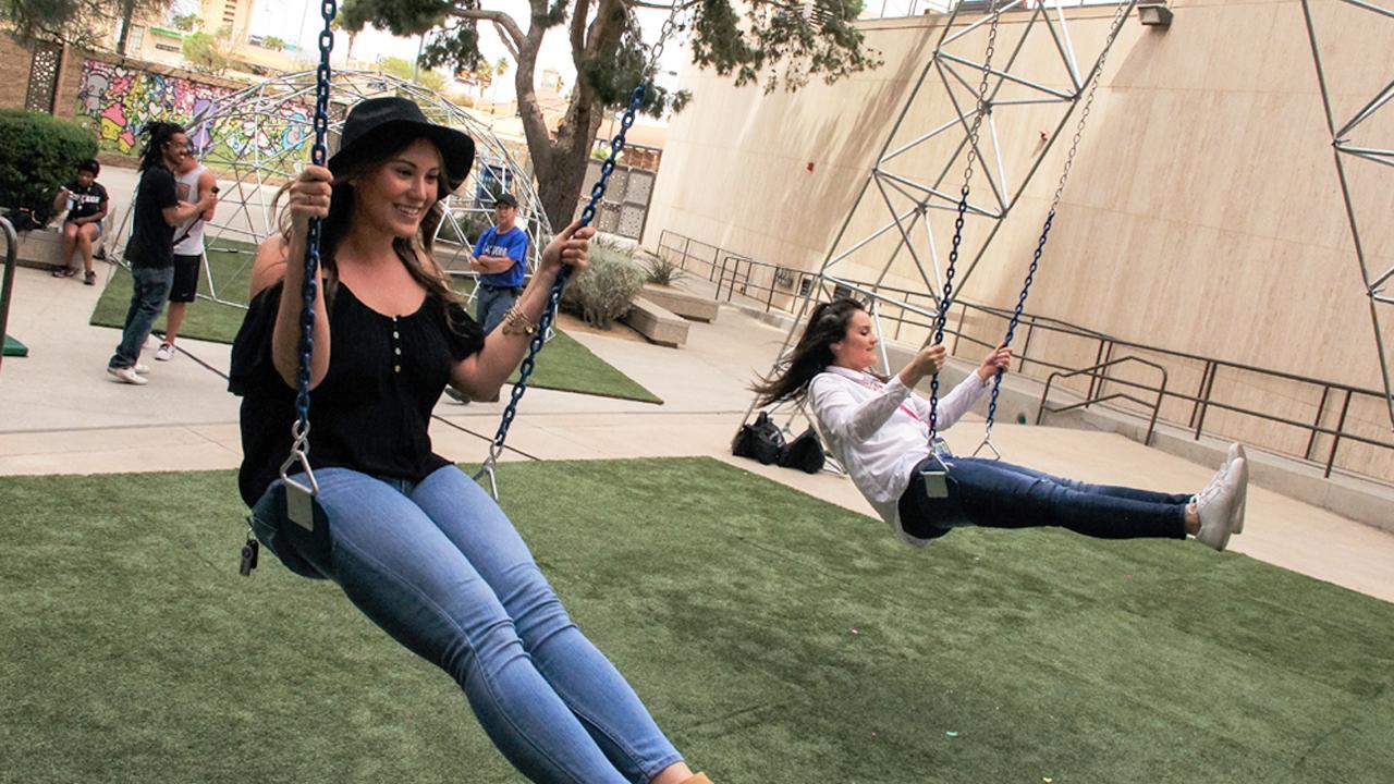 Zappos Swingset